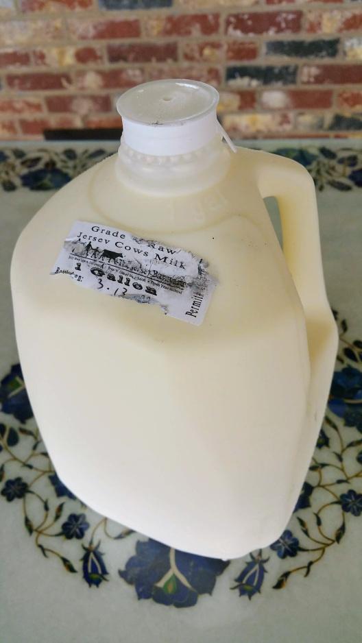 Raw Milk for Grandma's Yoghurt