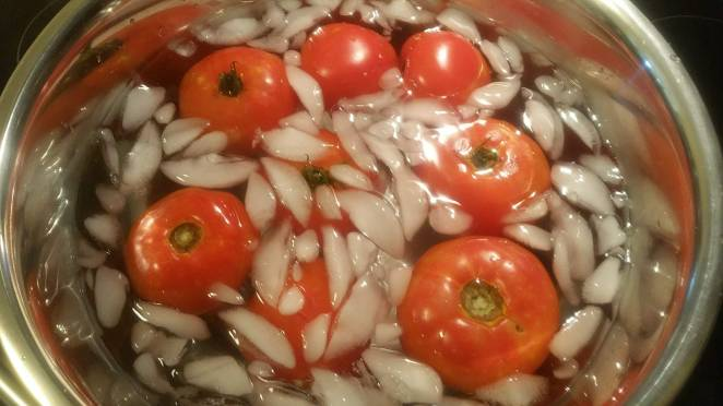 Marinara Sauce Blanched Tomatoes in Ice Bath